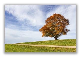Landschaft - minimalistisch