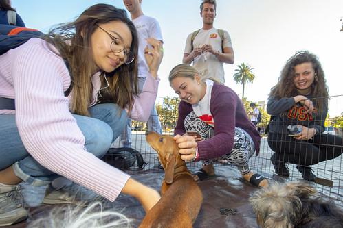 Puppies Visit Helenes 11/12/18