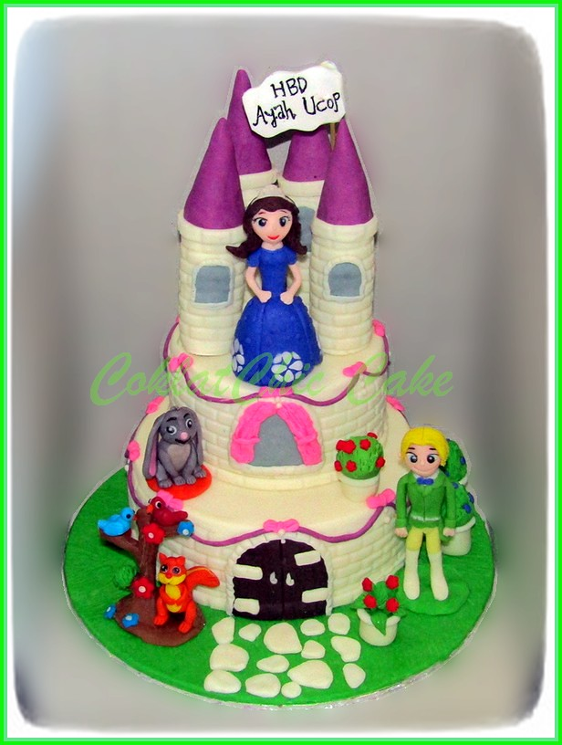 Cake Sofia AYAH UCOP 15 /12/ 12