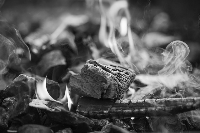 2018.12.08_342/365 - In the Еnd Everything Will Be Ashes...