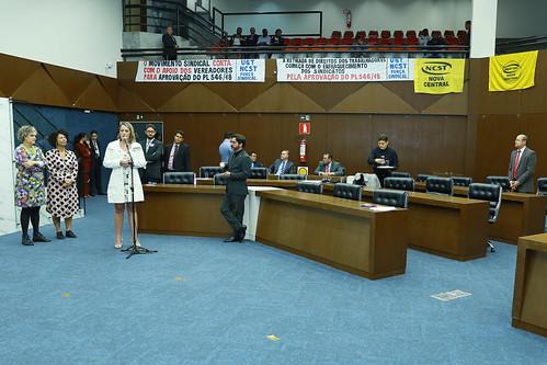 96ª Reunião Ordinária - Plenário
