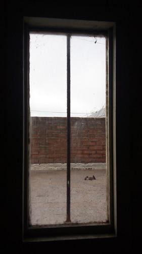A través de la ventana, mierda en la terraza