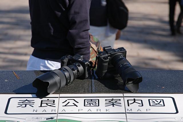 20181110_第7回シグブラフォトウォークin奈良_100