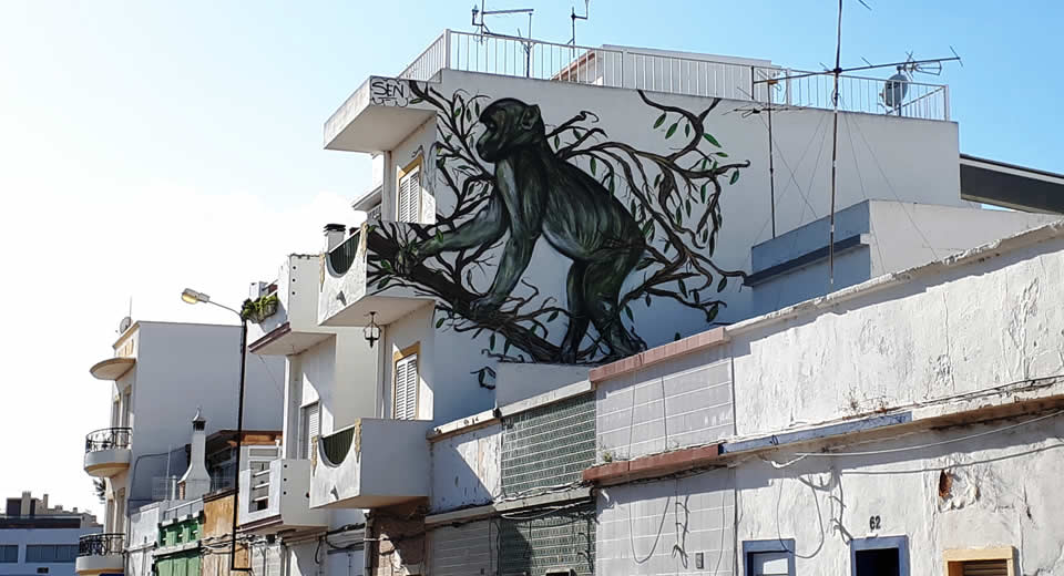 Street art in Olhão, Portugal | Mooistestedentrips.nl